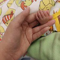 pienen pieni käsi_n